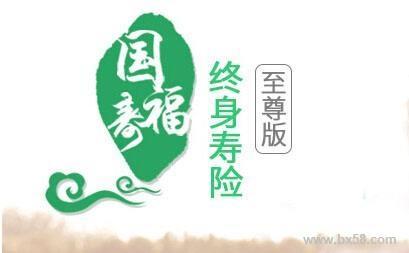 中国人寿少儿国寿福至尊版  优缺点详细分析